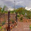 Boothill Cemetary Image by John Malone
