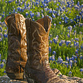 Boots And Bluebonnets by David and Carol Kelly