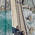 Boots On Swing Bridge Over Troubled White Water by Stephan Pietzko