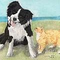 Border Collie Dog Orange Tabby Cat Art by Cathy Peek