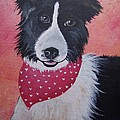 Border Collie by Leslie Manley