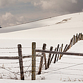 Border Line by Fran Riley