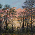 Border Pines by Kathleen McDermott