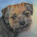 Border Terrier Jack by Richard James Digance