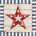 Bordered Patriotic Barn Star IV by Paul Brent
