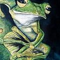 Boreal Flyer Tree Frog by Joey Nash