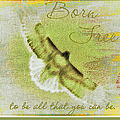 Born To Be Free by Bobbee Rickard