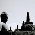 The Contemplation Of The Buddha by Shaun Higson
