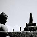 The Meditation Of The Buddha by Shaun Higson