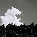 Borobudur Sky Cloud by Shaun Higson