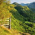 Borrowdale Valley - Lake District by Brian Jannsen