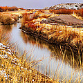 Bosque Canal by Diana Powell