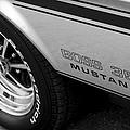Boss 351 Mustang by Gordon Dean II
