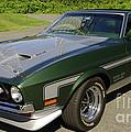 Boss 351 Mustang by James C Thomas