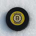 Boston Bruins by Michael Krek