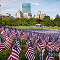 Boston Common Flags by Susan Cole Kelly