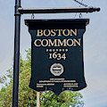 Boston Common Park Sign, Boston, Ma by Panoramic Images