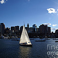 Boston Harbor by Olivier Le Queinec