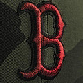 Boston Red Sox by David Haskett II
