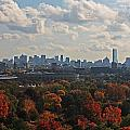 Boston Skyline View From Mt Auburn Cemetery by Michael Saunders