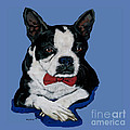 Boston Terrier With A Bowtie by Dale Moses