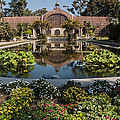 Botanical Building Reflecting In The Lily Pond At Balboa Park by Lee Kirchhevel