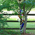 Bottle Tree by Suzanne Gaff