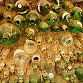Bottles In The Wall by Jeff Swan