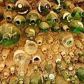 Bottles In The Wall by Jeff Swan