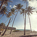 Bottom Bay Tropical Beach In Barbados Caribbean by Matteo Colombo