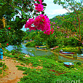 Bouganvilla Watches Over Village Fishing Boats by Pamela Smale Williams