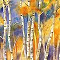 Boulder Aspens by Jackie Friesth