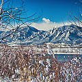Boulder Colorado Winter Season Scenic View by James BO Insogna
