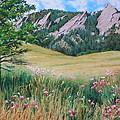 Boulder Flatirons - Chautauqua Study by Daniel Dayley