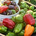Bountiful Peppers by Coleen Harty