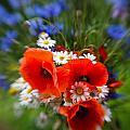 Bouquet Of Fresh Poppies Camomiles And Cornflowers by Jaroslaw Blaminsky
