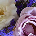 Roses And Violets  by Cheryl Miller