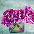 Bouquet Of Beauty by Andrea Kollo