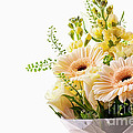 Bouquet Of Flowers On White Background by Simon Bratt Photography LRPS
