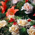 Bouquet by Sarka Olehlova
