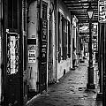 Bourbon Street Diva by Samuel Nowell