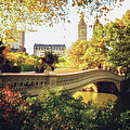 Bow Bridge - Autumn - Central Park by Vivienne Gucwa