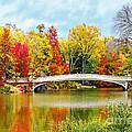 Bow Bridge Autumn In Central Park  by Regina Geoghan