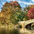 Bow Bridge by Claudia Kuhn