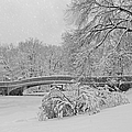 Bow Bridge In Central Park During Snowstorm Bw by Susan Candelario