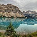 Bow Lake Pano Banff National Park by Jack Nevitt