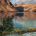 Bow Lake Sunrise by D Robert Franz