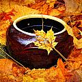 Bowl And Leaves by Rodney Lee Williams