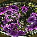 Bowl Of Dahlias by Wes and Dotty Weber