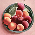 Bowl Of Fruit by Tomar Levine